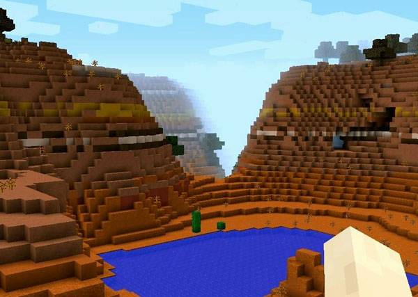 Minecraft. Image courtesy of  print screen by Radenka Kolarov