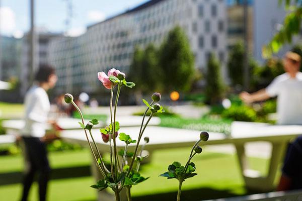 UTS Alumni Green . Photo credit: Florian Groehn