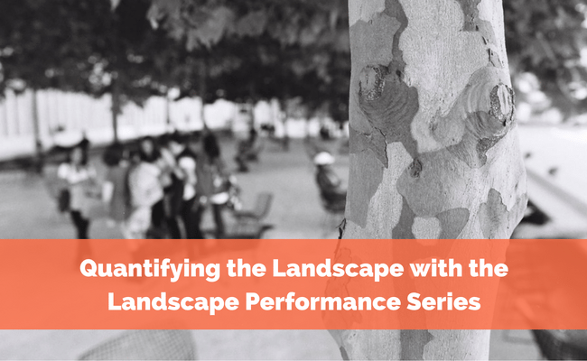 Quantifying the Landscape with the Landscape Performance Series