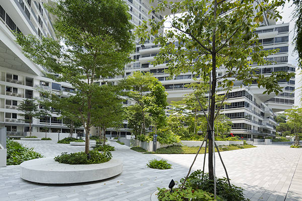 The Interlace. Photo Credit: :  ICN Design Landscape Architects / Craig Sheppard