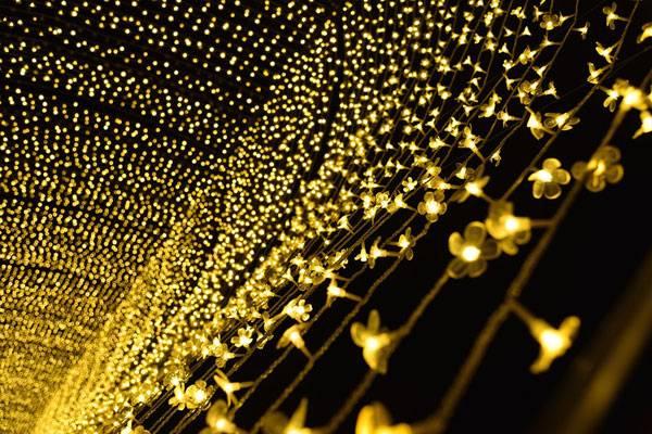 xterior Lighting Design. Licensed under CC0 Public Domain, image via Pixabay - source.