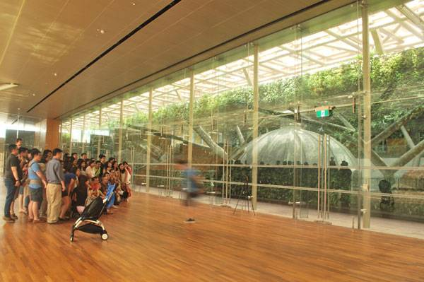 The National Gallery. Image Credit: ICN Design Landscape Architects