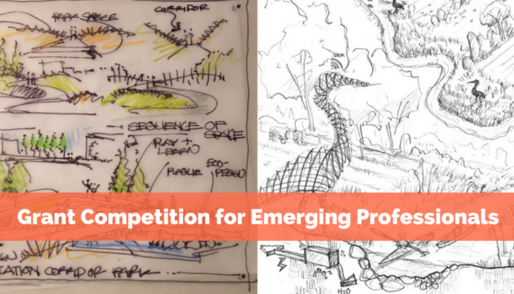 Grant Competition for Emerging Professionals