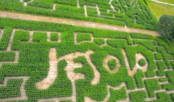 LeMessi Labirinto di Jesolo. Photo credit: Flavia Pastò