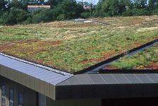 Extensive Green Roof at Vendée Historial, les Lucs. Credit: Public Domain