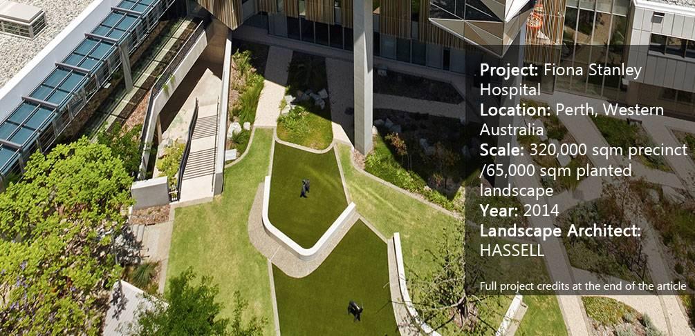 Fiona stanley hospital a landscape for healing for Landscape architecture jobs australia