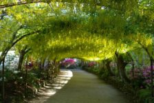Does Your Garden Design Have to Match Your House?