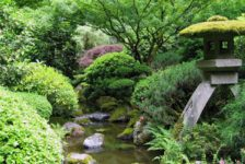 5 Key Principles To Think About When Designing A Beautiful Garden