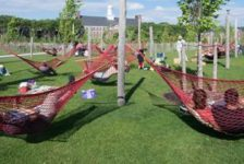 Governors Island Hammock Grove. Credit: Timothy Schenck Photography