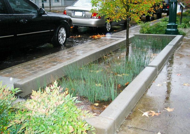 3 Projects Show how Green Infrastructure can Solve our Global Problems