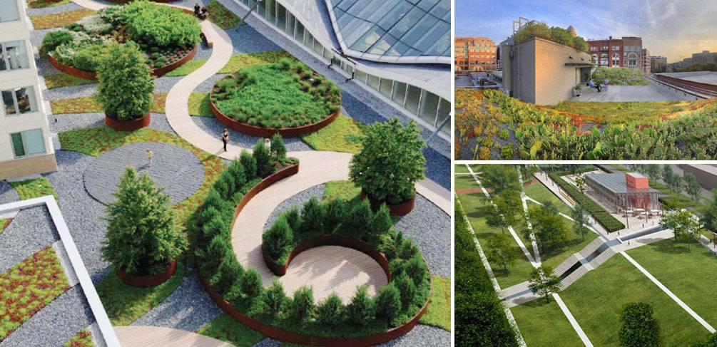 Green Roofs For Healthy Cities 10 Ways Green Roofs Can Help