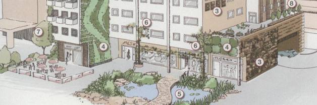 Landscape and urban design for bats and biodiversity