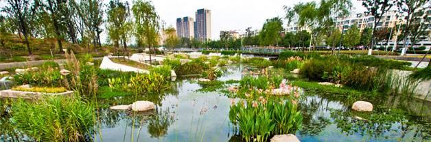 Lotus Lake Park. Credit: Integrated Planning and Design Inc.