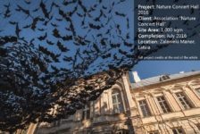 Art Installation of 10,000 Bats Graces the Nature Concert Hall