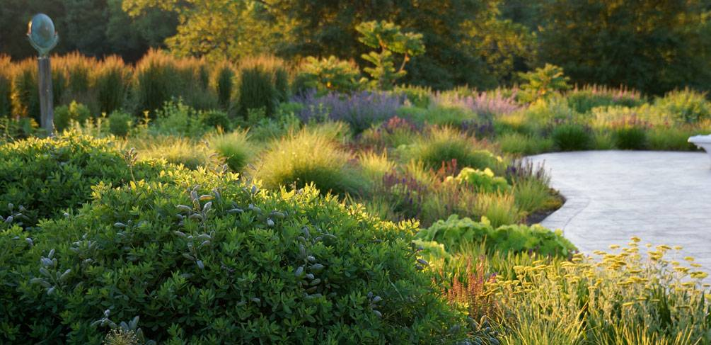 10 Of The Most Common Mistakes People Make In Planting Design And