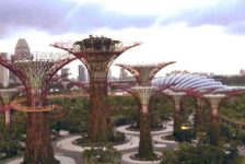 6 Top Shows and Expos for Landscape Architects You Don't Want to Miss