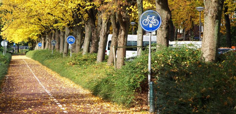 Bicycle path in Rotterdam, Photo Credit: Rob Koningen