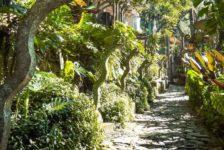 Xilitla Garden. Photo credit: Rod Waddington
