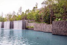 oasis-coyoacan