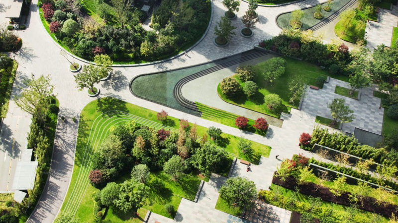 Why Do Some Graduate Landscape Architects Have a Poor Understanding of Planting?