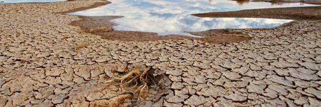 Arid land may become a common sight; credit: Ev Thomas / shutterstock.com