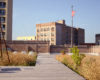 Green Roof Inspiration, Innovation, and Education with Molly Meyer