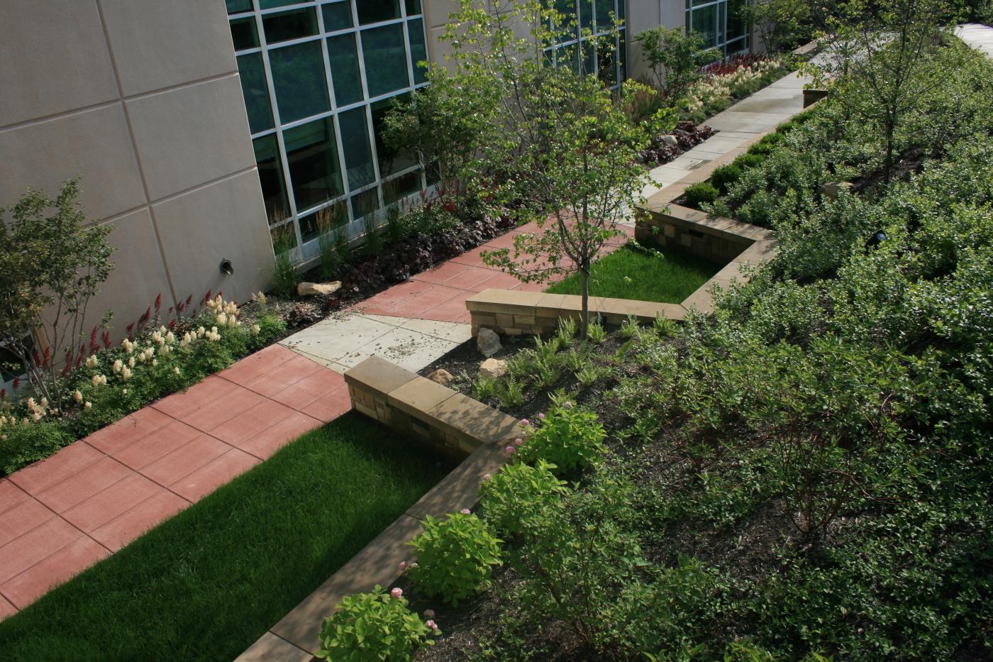 Passive Recreation Healing Garden 2