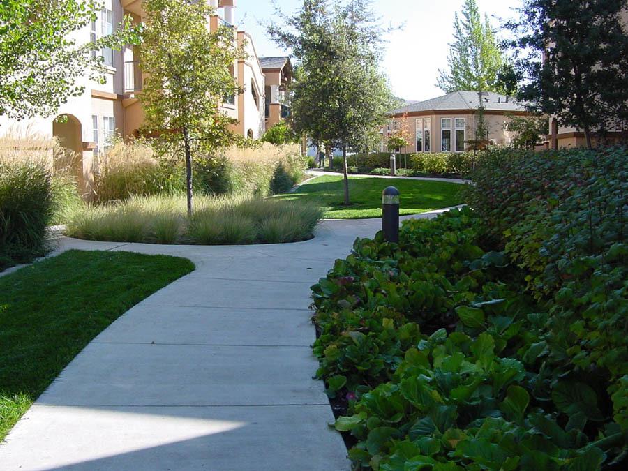 Kawana Springs – with Quadriga Landscape Architecture