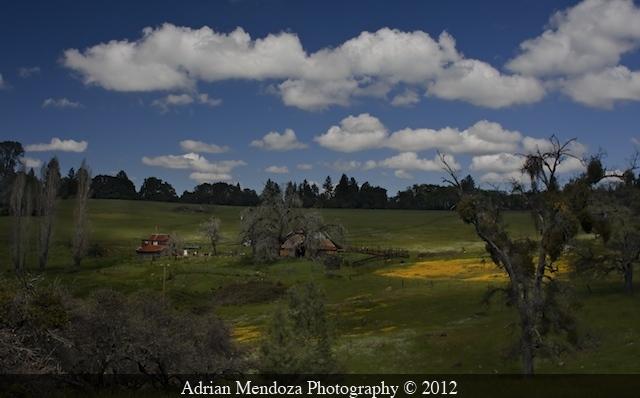Terrain near Fiddletown, California