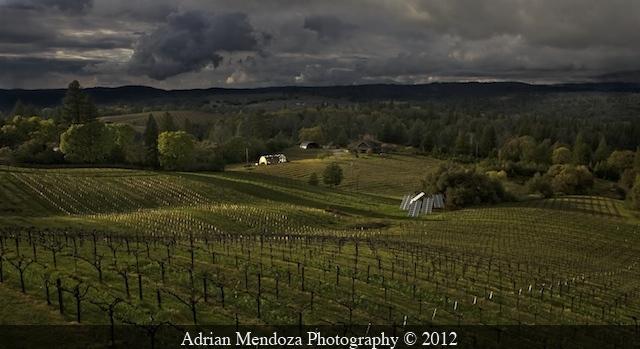 "Sunset in California's ""Fair Play"" Wine Region"