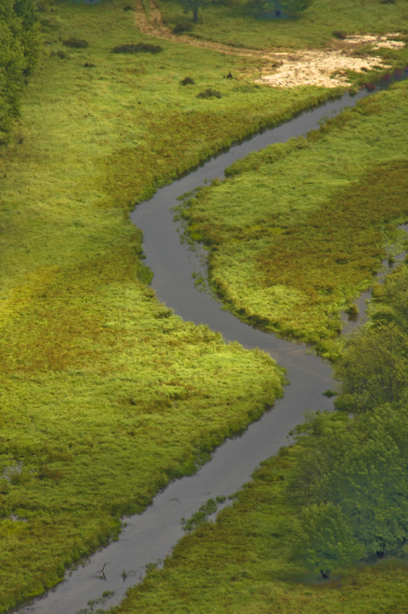 WA Creek