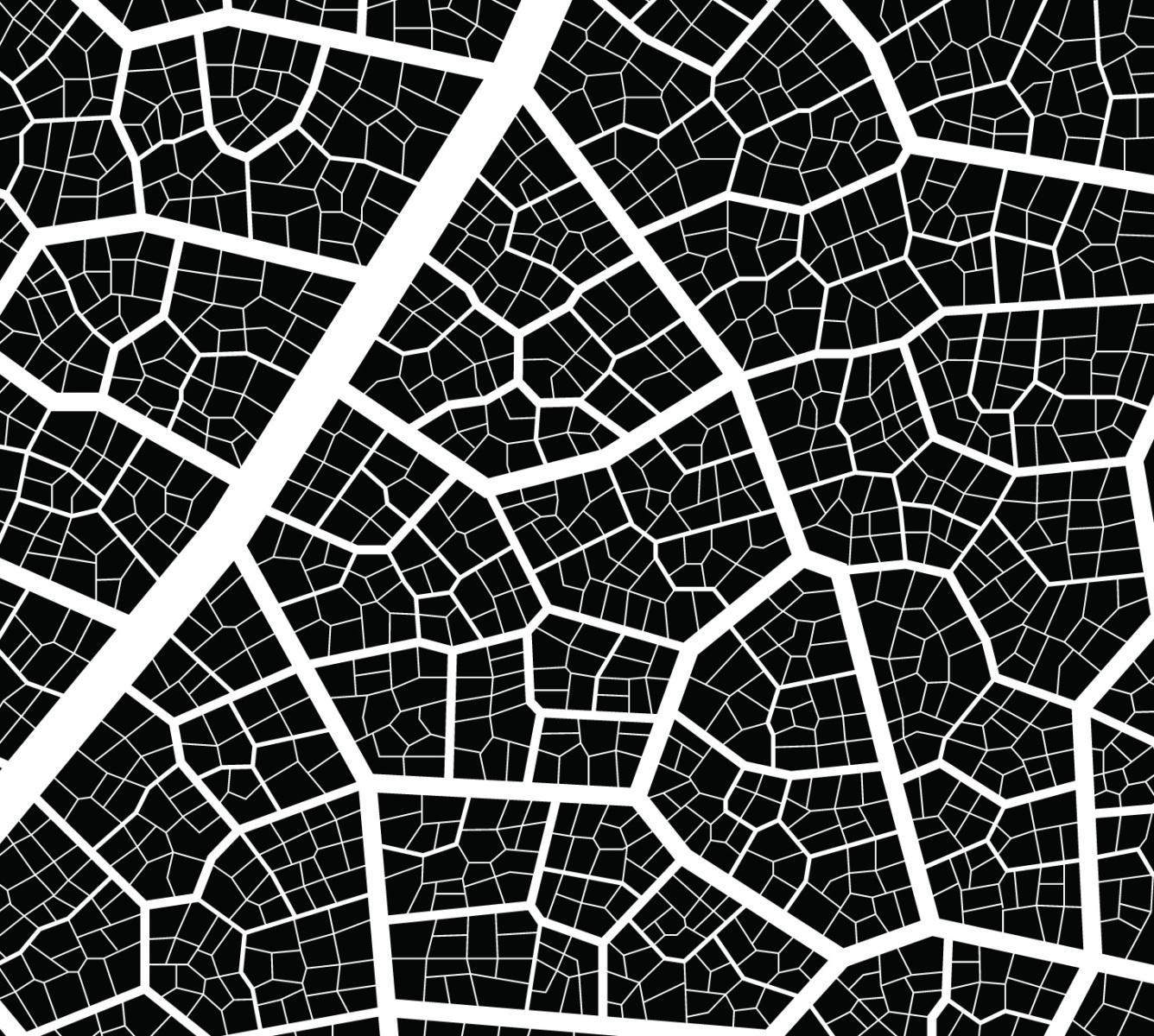 Urban Tissue Experiment Land8