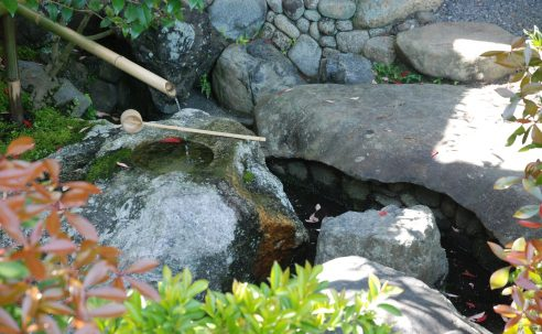 Photo 1: Even an ephemeral garden detail not necessarily intended by the designer can give voice to a season or mood