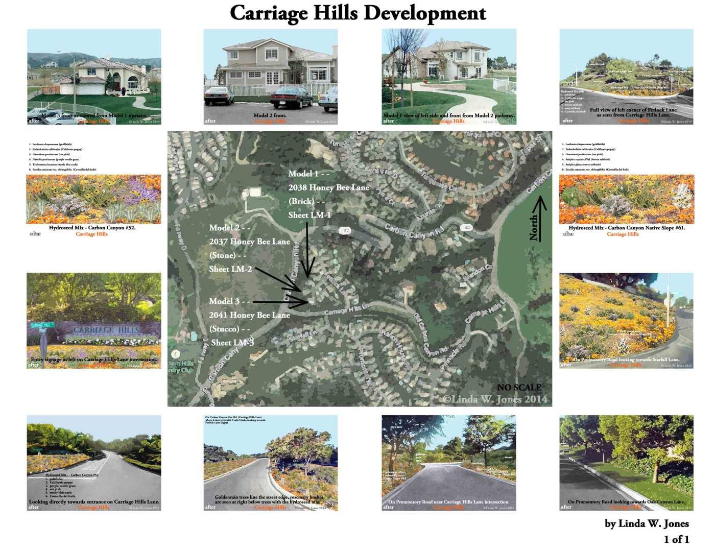 2.–Carriage-Hills-Develpment-lr030415