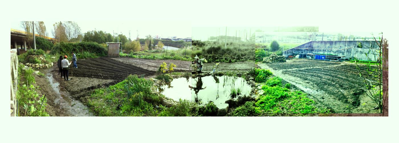 organic farm in oporto