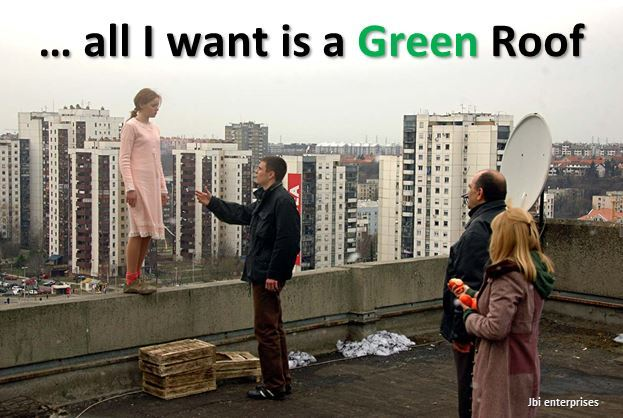 I want a Green Roof