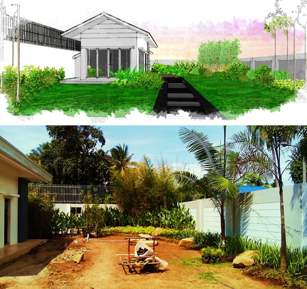 garden progress