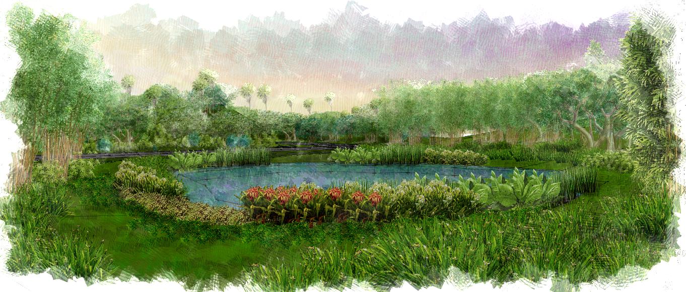 Retention Pond Landscape