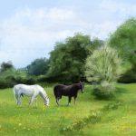 8469-horsey2