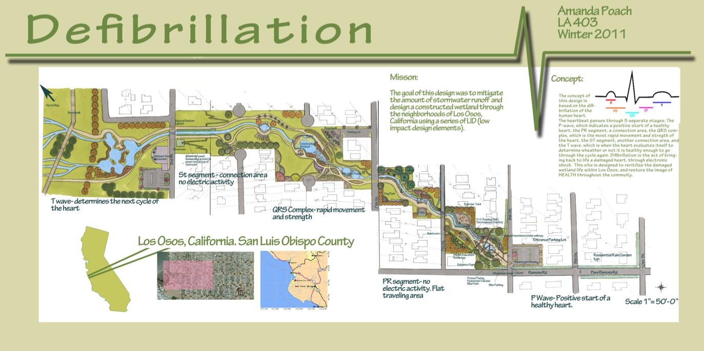 Wetland Restoration Master Plan – Los Osos