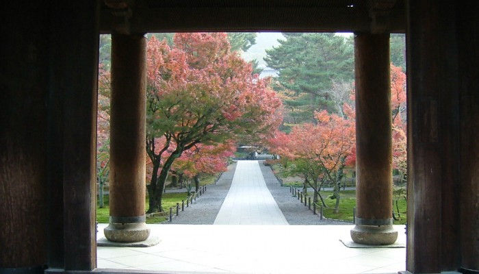 Nanzen-ji temple garden in Kyoto, maintained by Ueyakato Landscape Ltd. Photo courtesy of Nanzen-ji.