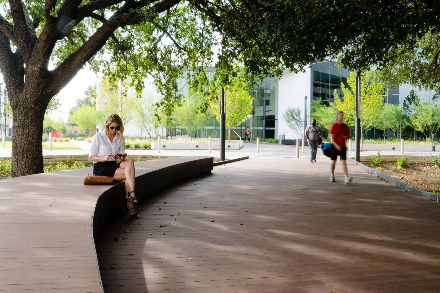A place of respite under a grove of relocated trees at Oracle; employee entrance pictured in back (Photo by TBGer Nick Blok)