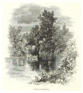 Central Park, 1869