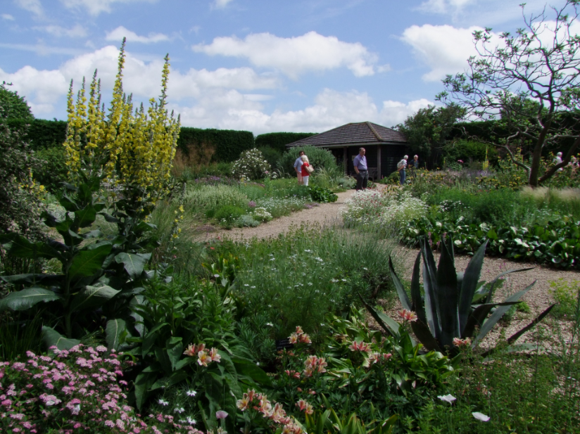 5 Top Planting Design Resources For New Landscape Architects Land8
