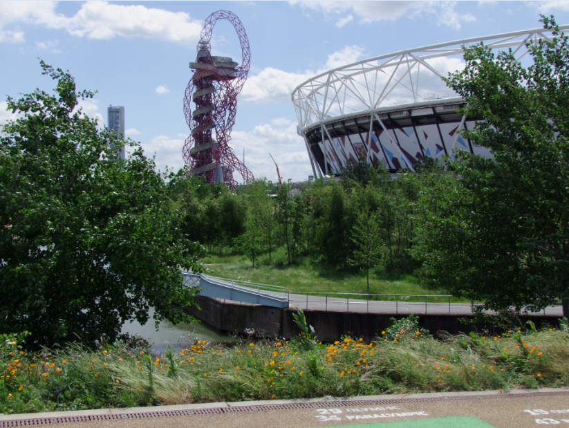 Contemporary naturalistic plantings, such as these mixes at Queen Elizabeth Olympic Park, Statford, UK, often have wide plant palettes that can be difficult to manage both in design and construction processes. Softwares for planting design management and plant sourcing can make these complex processes more efficient and profitable.