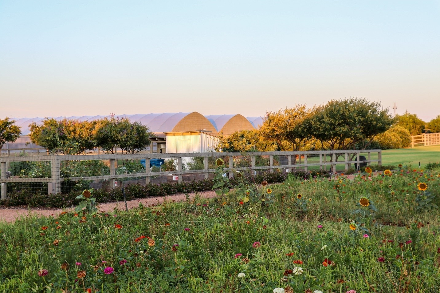 Part of the 5-acre on-site organic farm at Harvest (Photo by TBGer Hunter Jayroe)