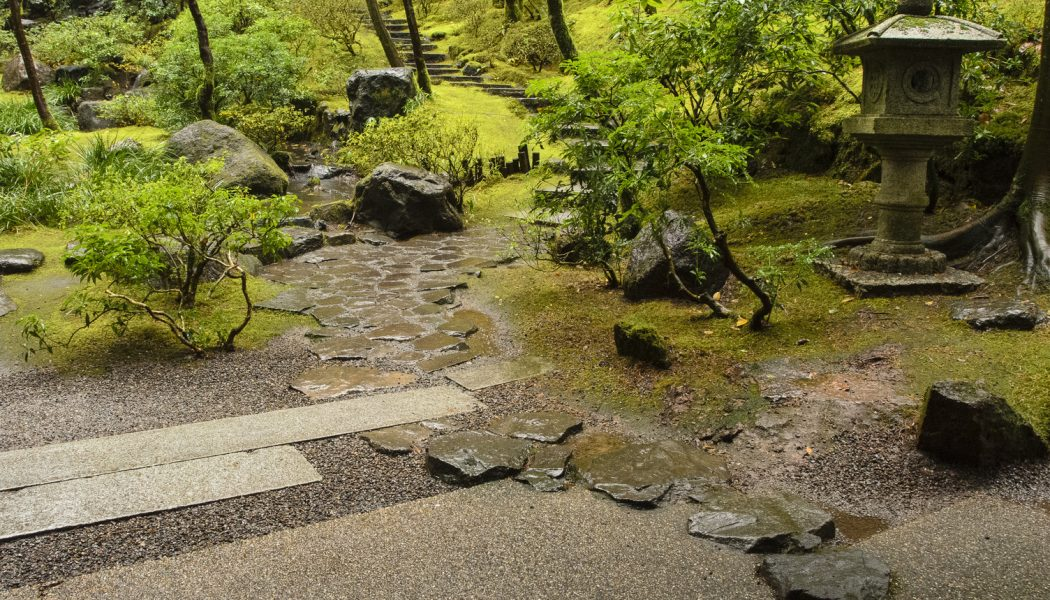 With an Eye Towards Nature: A Japanese Garden Design Intensive