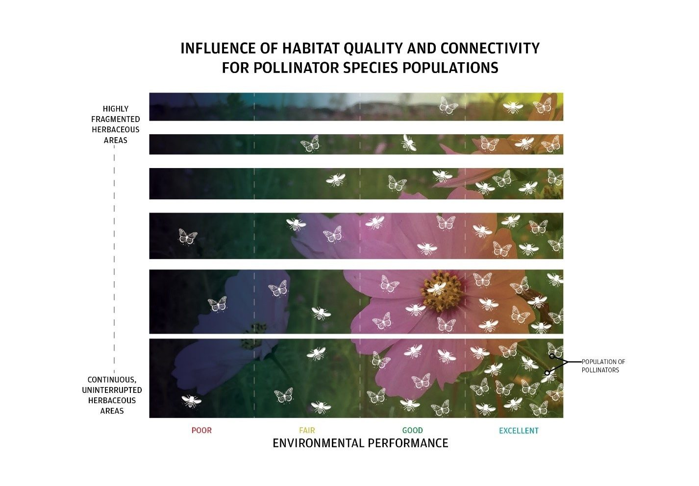 Figure 4: Environmental performance based on connectivity and habitat quality for pollinators. Image Credit: Dig Studio and Great Ecology.