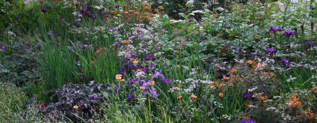 Intermingled Planting, Tom Stuart-Smith Studio, Chelsea Flower Show 2019