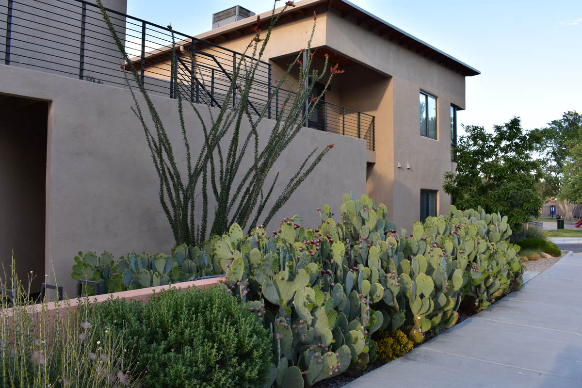 Aliso Townhomes